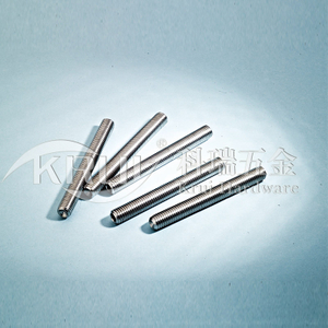 KR010- stainless steel 304 316 lengthen clamping screw nail