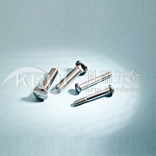 KR014-GB12 DIN603 GB67 stainless steel side neck screw stainless steel slot bolt